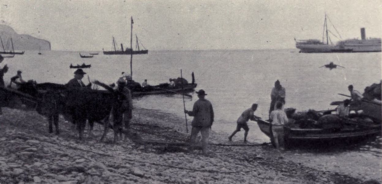 Madeira : Old and New - Funchal Beach : Country Market Boat (1909)