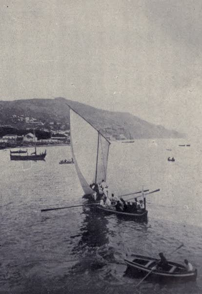 Madeira : Old and New - West Country Passenger Boat Sailing into Harbour (1909)