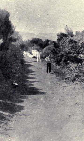 Madeira : Old and New - An Upland Lane : Santo da Serra (1909)