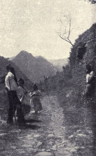 Madeira : Old and New - A Roadside Scene (1909)
