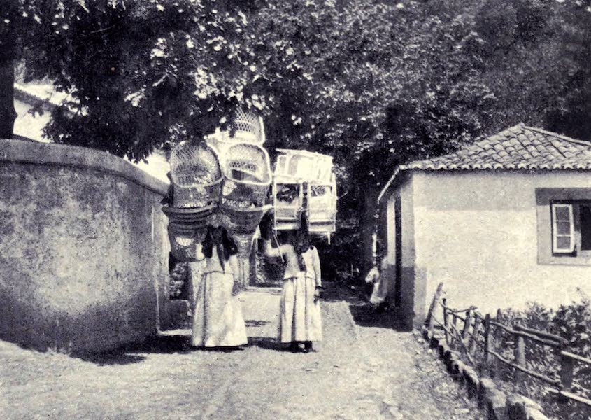 Madeira : Old and New - Basket Chairs coming into Town (1909)