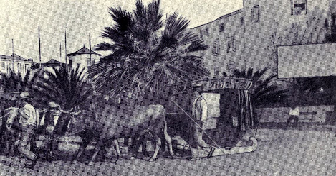 Madeira : Old and New - The Hansom Cab of Madeira (1909)
