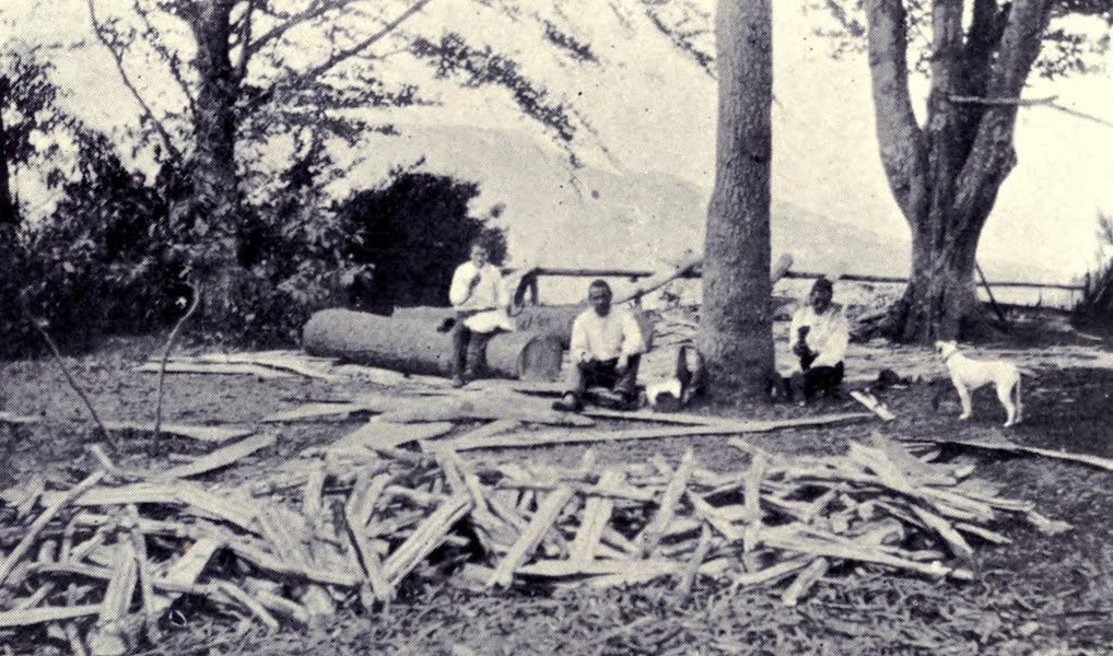 Madeira : Old and New - Wood Cutters : The Dinner Hour (1909)