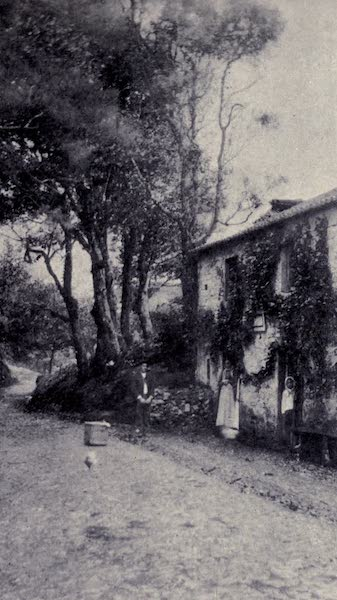 "Madeira : Old and New - A Wayside ""Venda"" (1909)"
