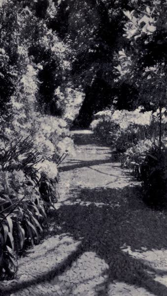 Madeira : Old and New - Entrance to a Country Garden (1909)