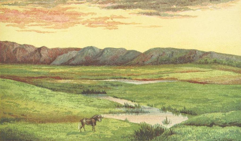 Matabele Land and the Victoria Falls - High Veldt, Transvaal (1881)