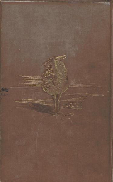 Matabele Land and the Victoria Falls - Back Cover (1881)