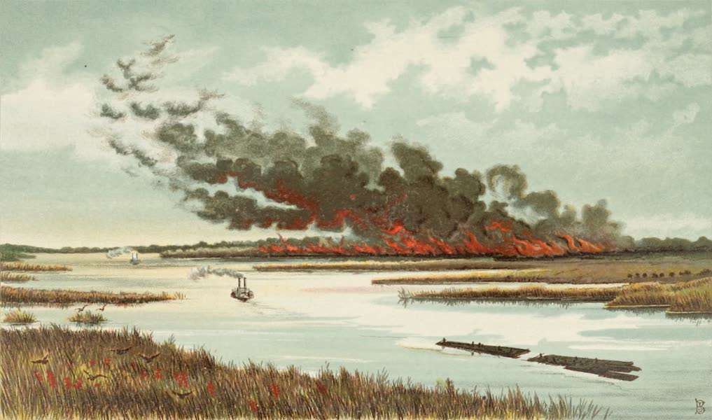Mexico To-Day - Forest on Fire, Alabama (1883)