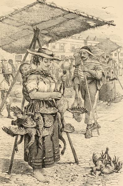 Mexico To-Day - The Market (1883)