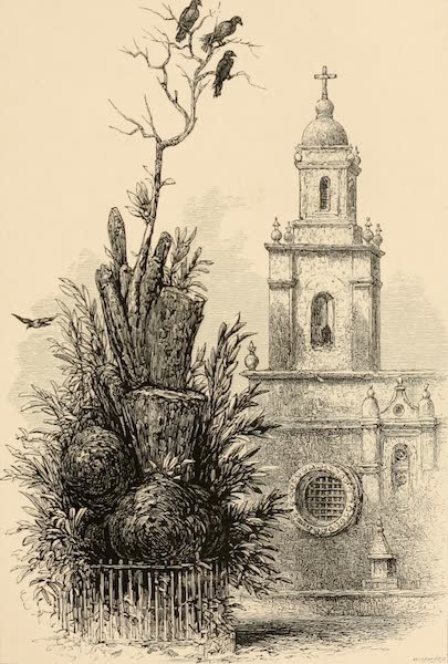 Mexico To-Day - The Tree of the Noche Triste (1883)