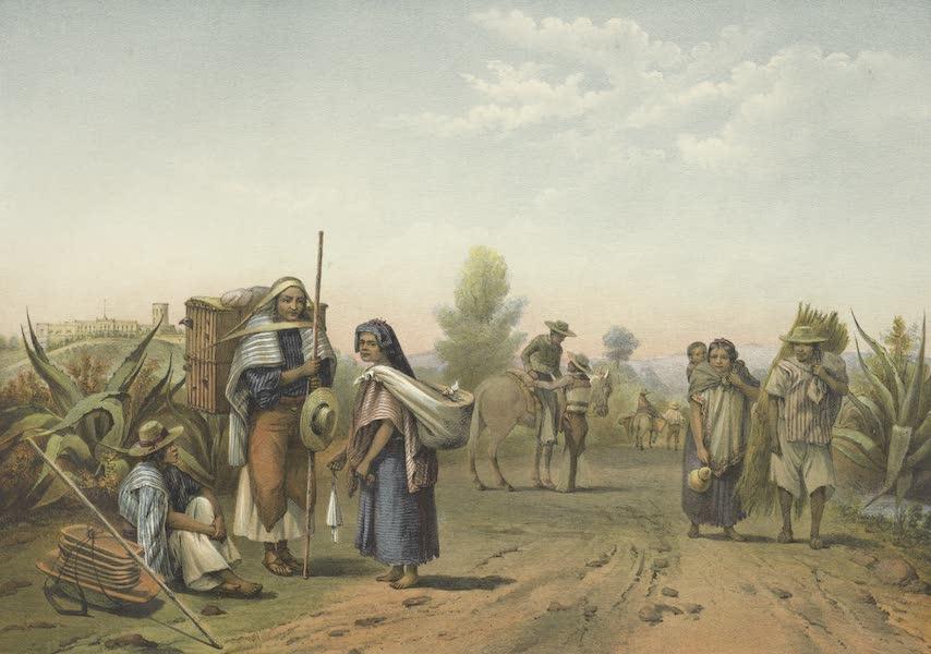 Mexico y sus Alrededories - Camino de Tacubaya a Chapultepec Trajes de Indios Mexicanos (1869)