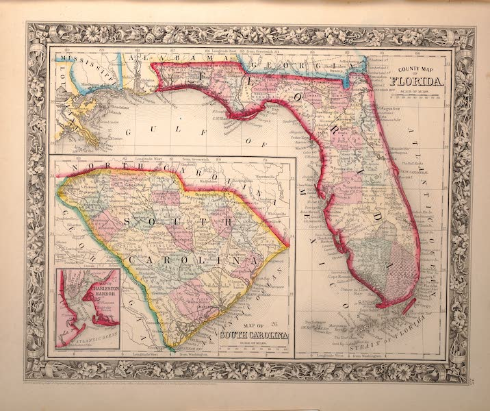 Mitchell's New General Atlas - County Map of Florida (1861)