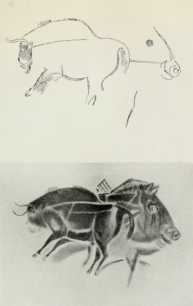 Monaco and Monte Carlo - Prehistoric Painting in the Altamira Cavern (1912)