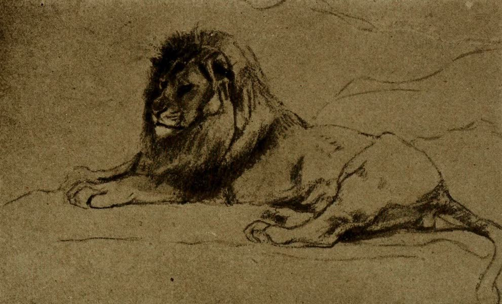 More Wanderings in London - Study of a Lion. J.M. Swan (Guildhall) (1916)