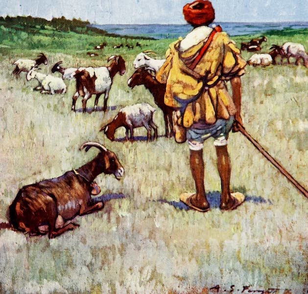 Morocco, Painted and Described - A Shepherd, Cape Spartel (1904)