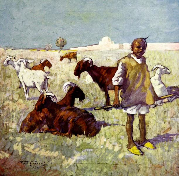 Morocco, Painted and Described - The Goat herd from Mediunah (1904)
