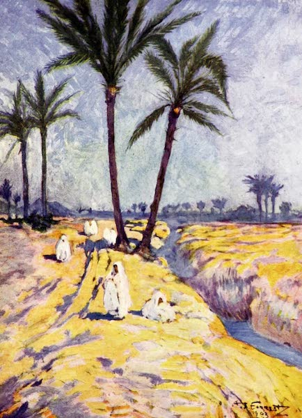 Morocco, Painted and Described - Date Palms near Marrakesh (1904)