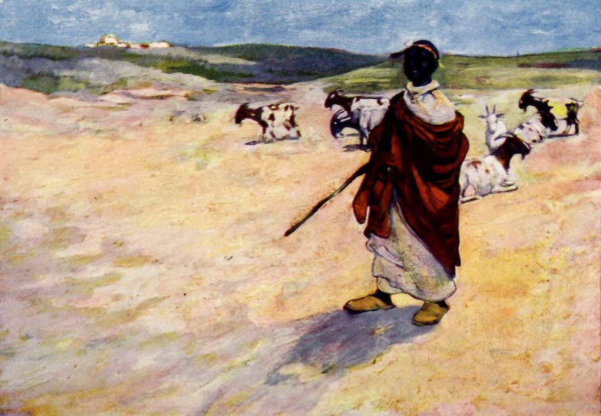 Morocco, Painted and Described - A Goatherd (1904)