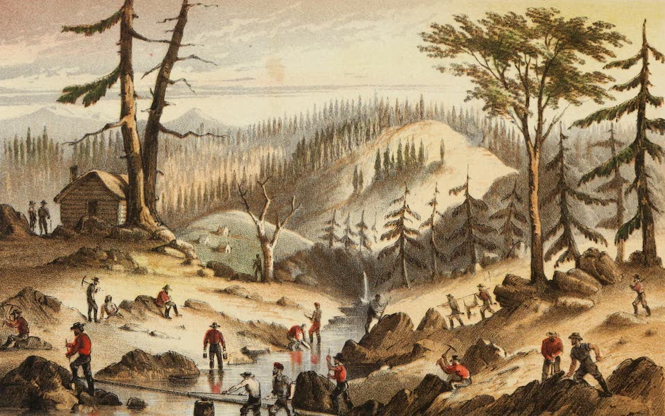 Mountains and Molehills - Where the Gold Comes From (1855)