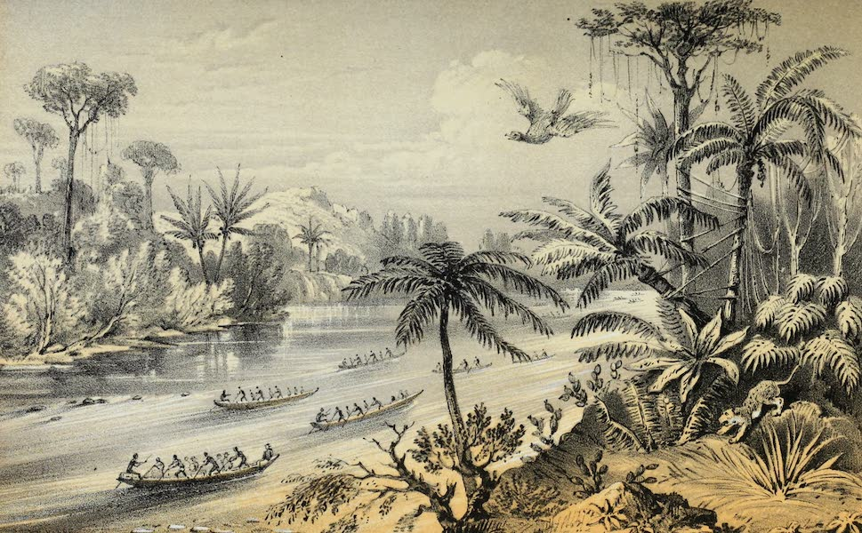 Mountains and Molehills - Chagres River (1855)