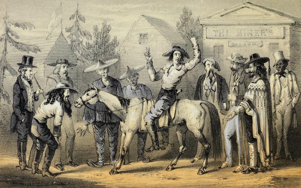 Mountains and Molehills - Horse Market Sonora (1855)