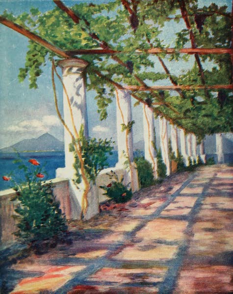 Naples, Painted and Described - Pergola (1904)