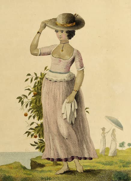 Female Quadroon Slave of Surinam