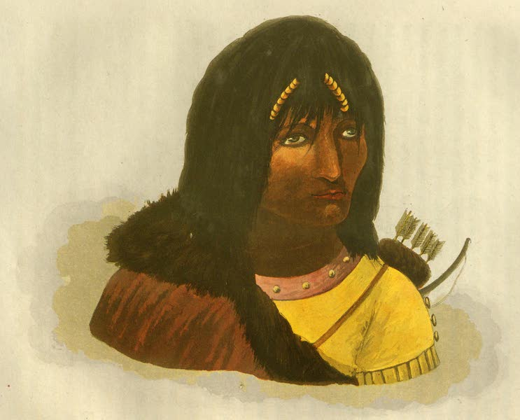 Narrative of a Journey to the Shores of the Polar Sea - Portrait of a Stone Indian (1823)