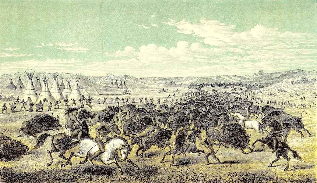 Narrative of the Canadian Red River Exploring Expedition Vol. 1 - Plain Crees Driving Buffaloes into a Pound (1860)
