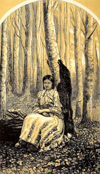 Narrative of the Canadian Red River Exploring Expedition Vol. 2 - Susan, a Swampy Half-Breed (1860)