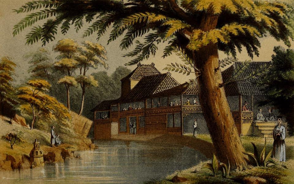 Narrative of the Earl of Elgin's Mission Vol. 2 - Tea Gardens near Yedo (Interior) (1859)