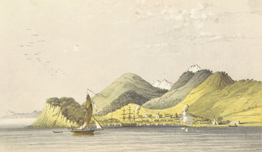 Narrative of the Voyage of H.M.S. Herald Vol. 2 - The Port of Petropaulowski (1853)