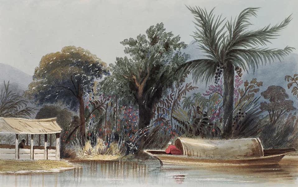 Narratives of South America - El Cienega (1836)