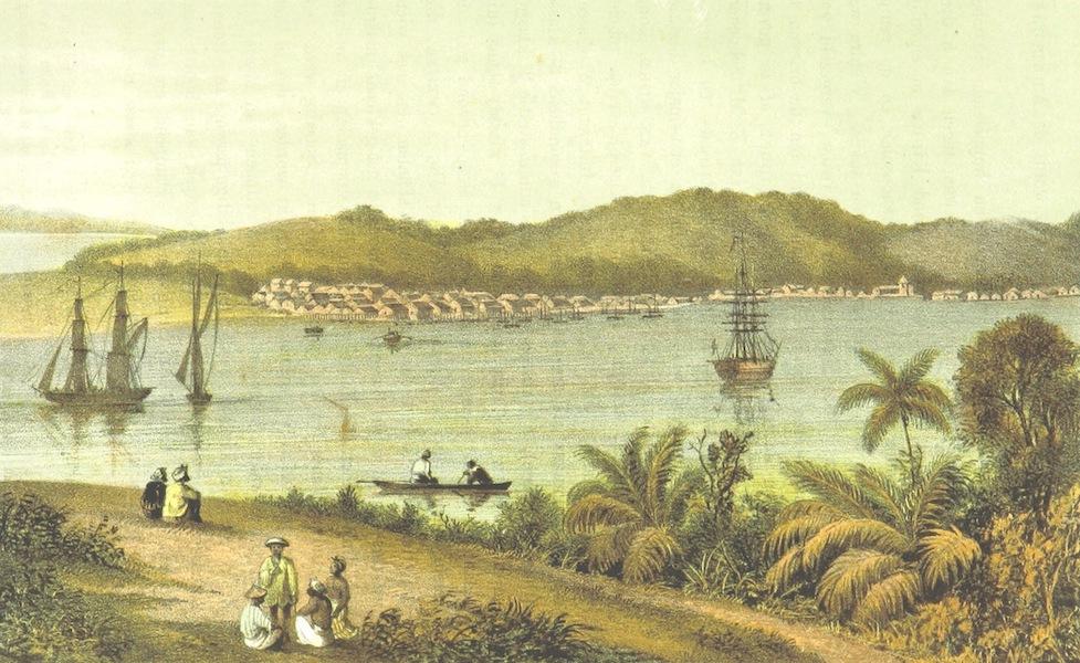 Neerlands-Oost-Indie Vol. 3 - Riouw (1859)