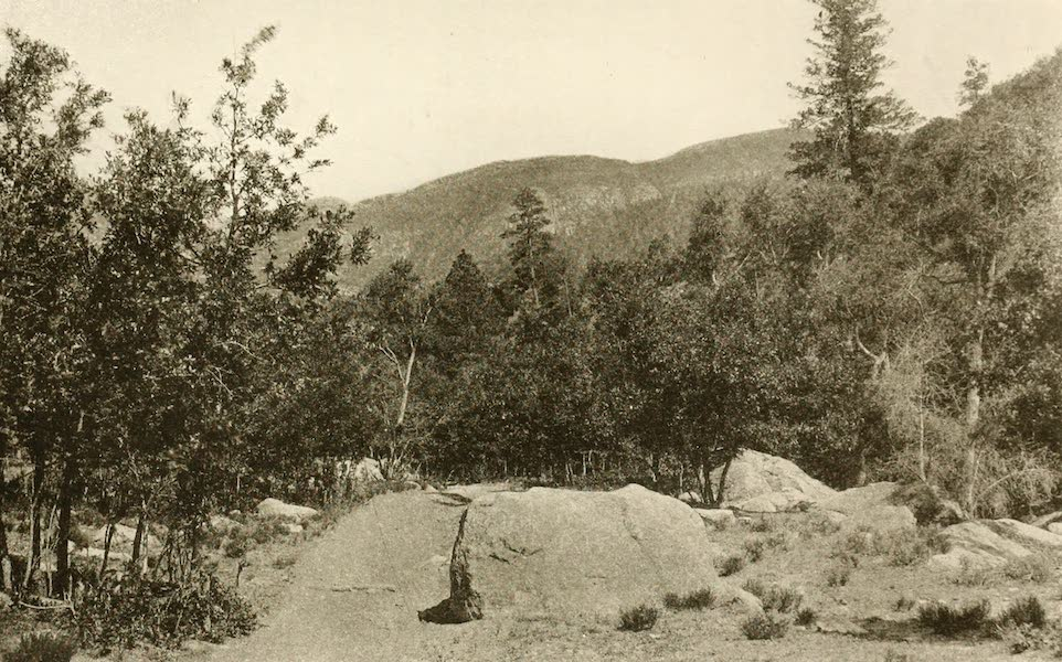 New Mexico, The Land of the Delight Makers - Bear Canyon, in the Sandias (1920)