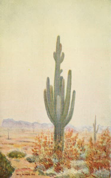New Mexico, The Land of the Delight Makers - The Guardian of the Desert (1920)