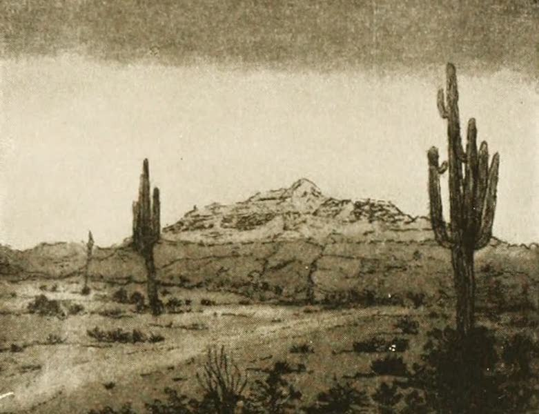 New Mexico, The Land of the Delight Makers - The Sentinels of the Desert (1920)
