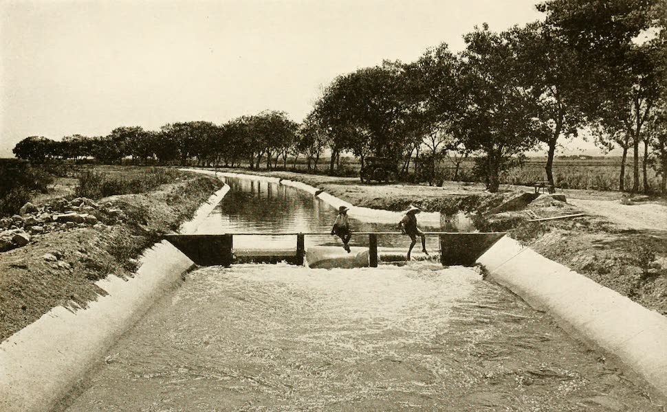 New Mexico, The Land of the Delight Makers - Section of the Main Canal, Carlsbad Project (1920)