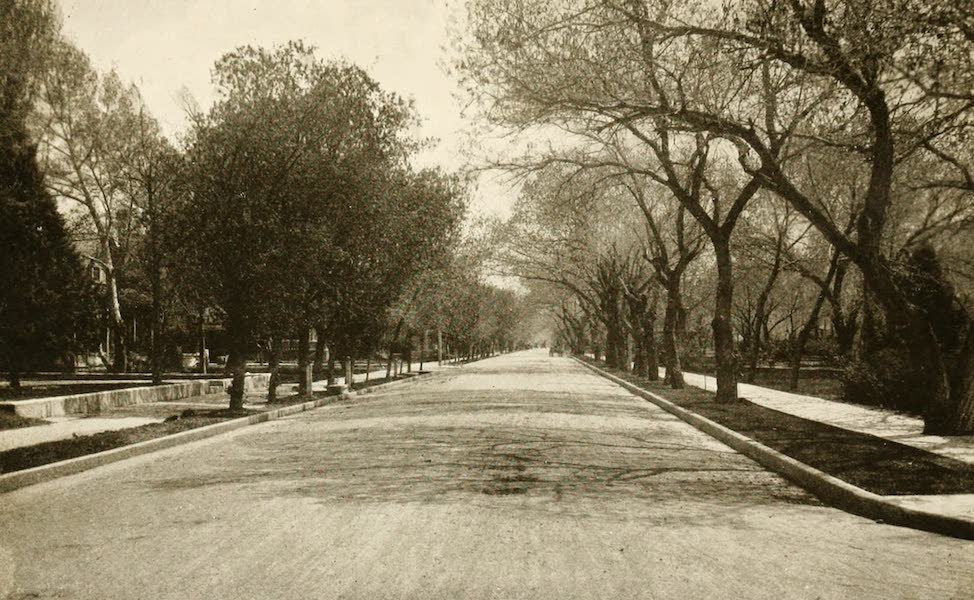 New Mexico, The Land of the Delight Makers - An Albuquerque Residential Street (1920)
