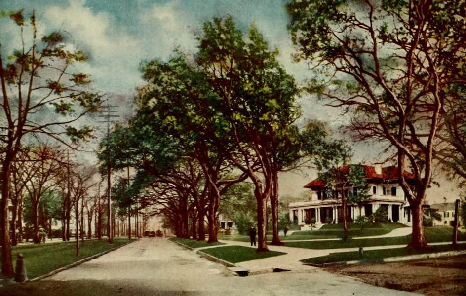 New Orleans, The Gateway to the Panama Canal - St. Charles Avenue (1913)