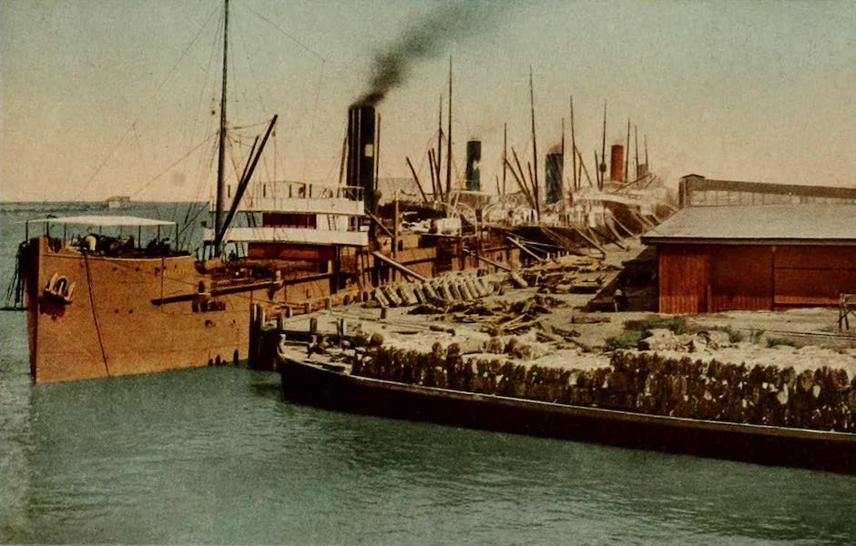 New Orleans, The Gateway to the Panama Canal - New Orleans Port [V] (1913)