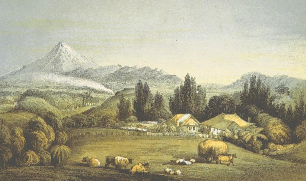 New Zealand; or Zealandia - Okoaro Cottage of J. Stephensen Smith Esqre, New Plymouth (1857)