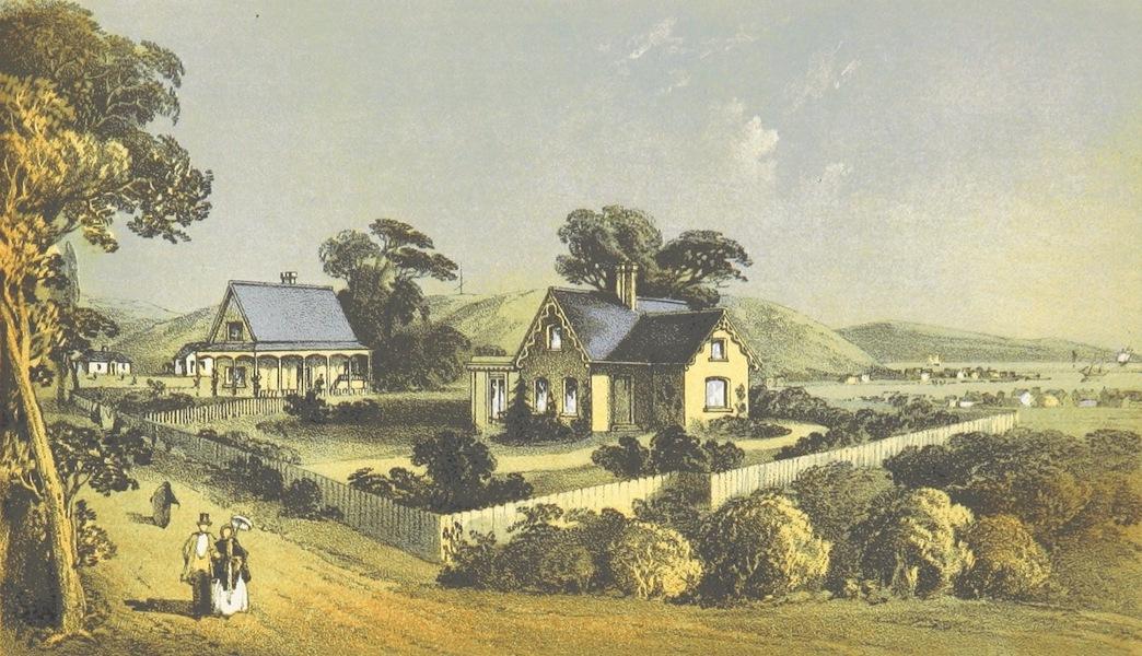 New Zealand; or Zealandia - Residences of the Revd C. L. Reay and the Revd H. F. Buu near Nelson (1857)