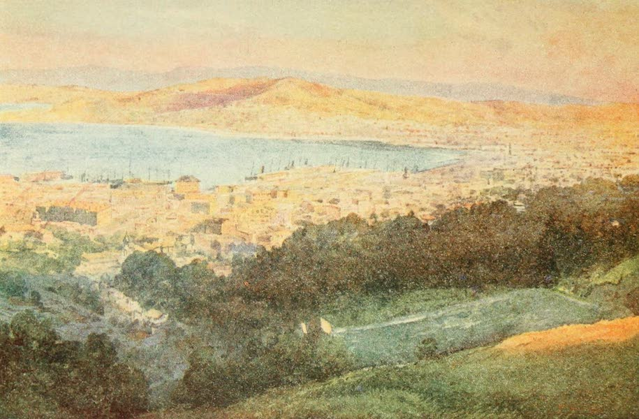 New Zealand, Painted and Described - Wellington (1908)
