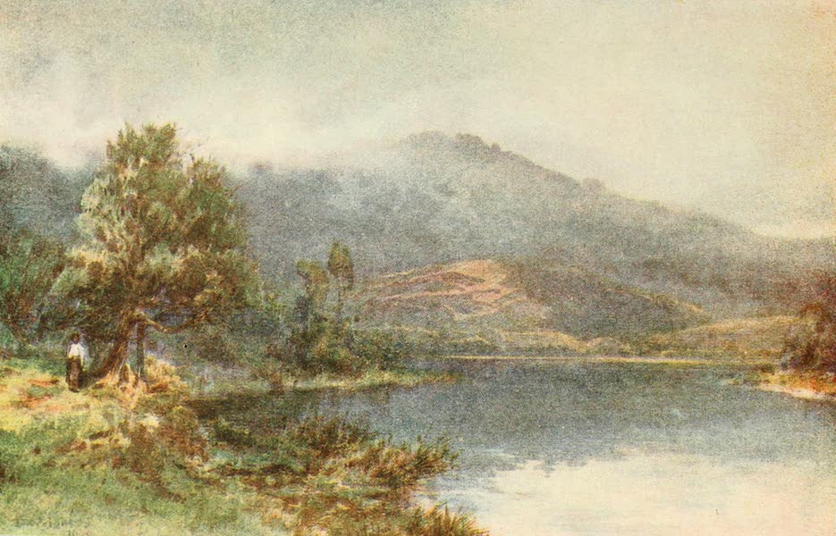 The Waikato at Ngaruawahia