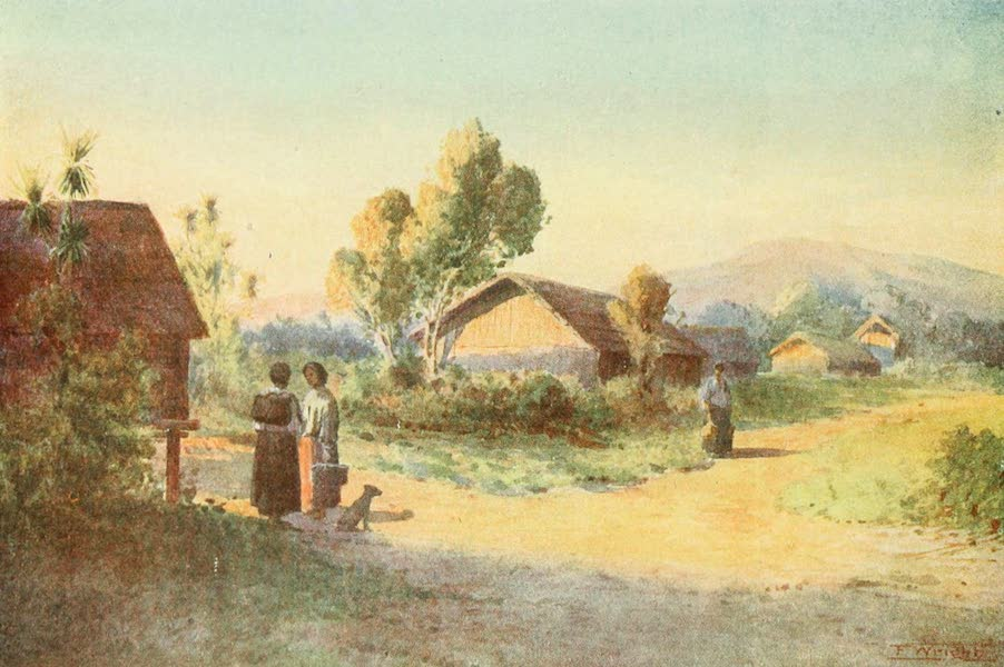 New Zealand, Painted and Described - A Maori Village (1908)