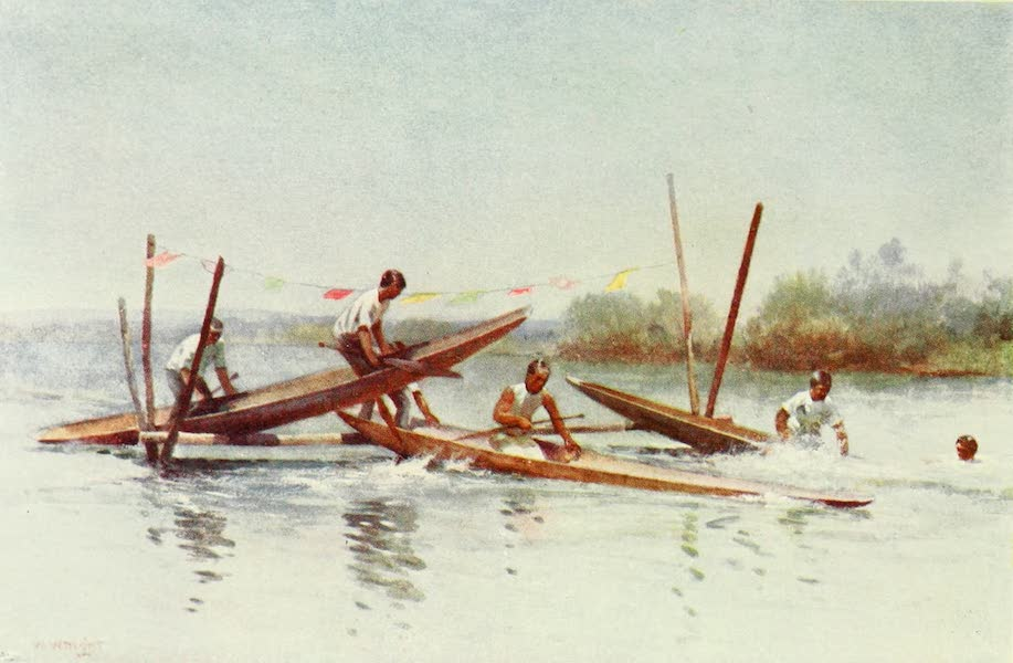 New Zealand, Painted and Described - Canoe Hurdle Race (1908)