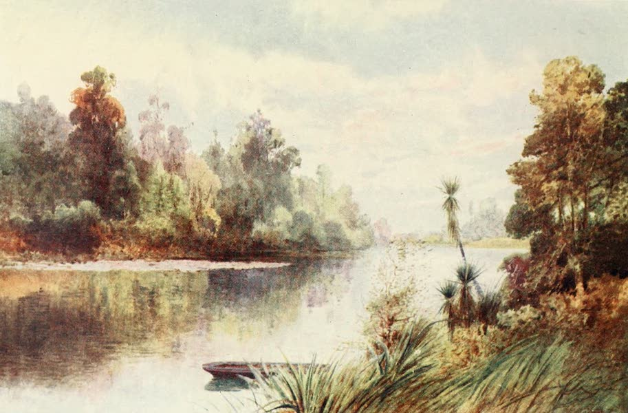 New Zealand, Painted and Described - On the Pelorus River (1908)
