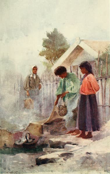 New Zealand, Painted and Described - Cooking in a Hot Spring (1908)