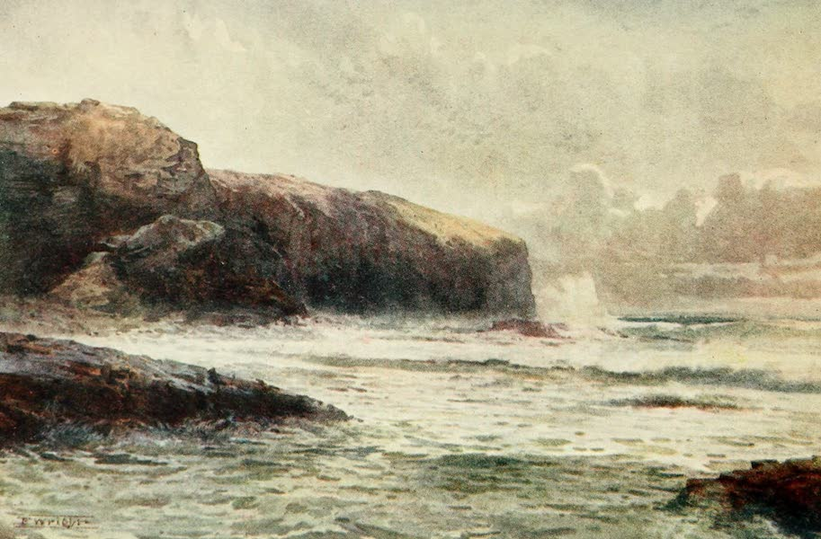 New Zealand, Painted and Described - Lawyer's Head (1908)